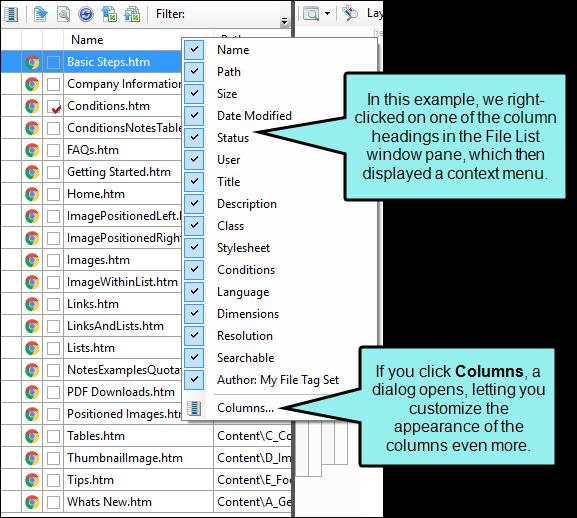 Customizing Column Information